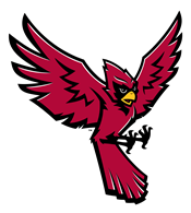 Raider Bird Logo